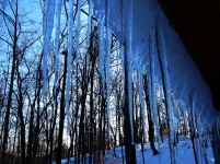 icicle back drop on the tree house