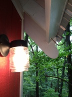 light up your day in the new tree house