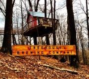 Tree house enhance